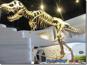 Mind_Museum_Fort_Bonifacio30
