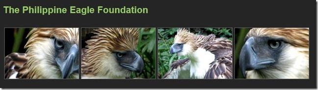 Philippine Eagle Foundation