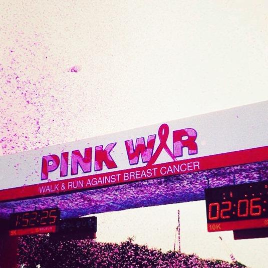 Avon-Pink-War