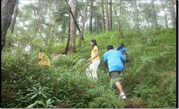 Tree-Top-Adventure-02