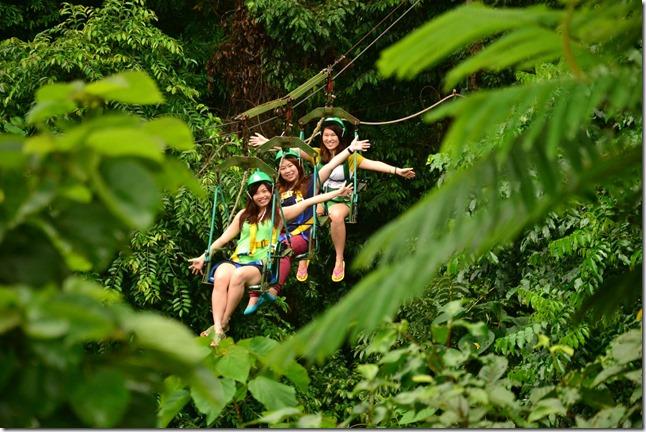 Tree-Top-Adventure-canopy-ride